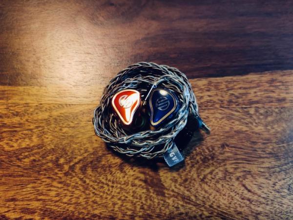 bgvp_est8-1 IEM+Cable